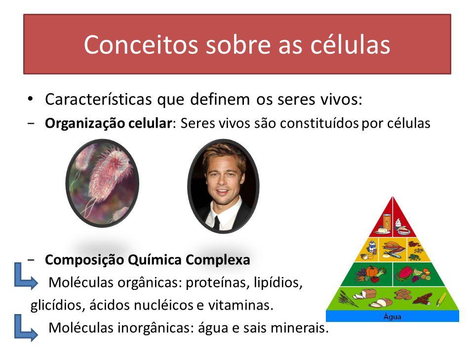 Conceitos sobre as células