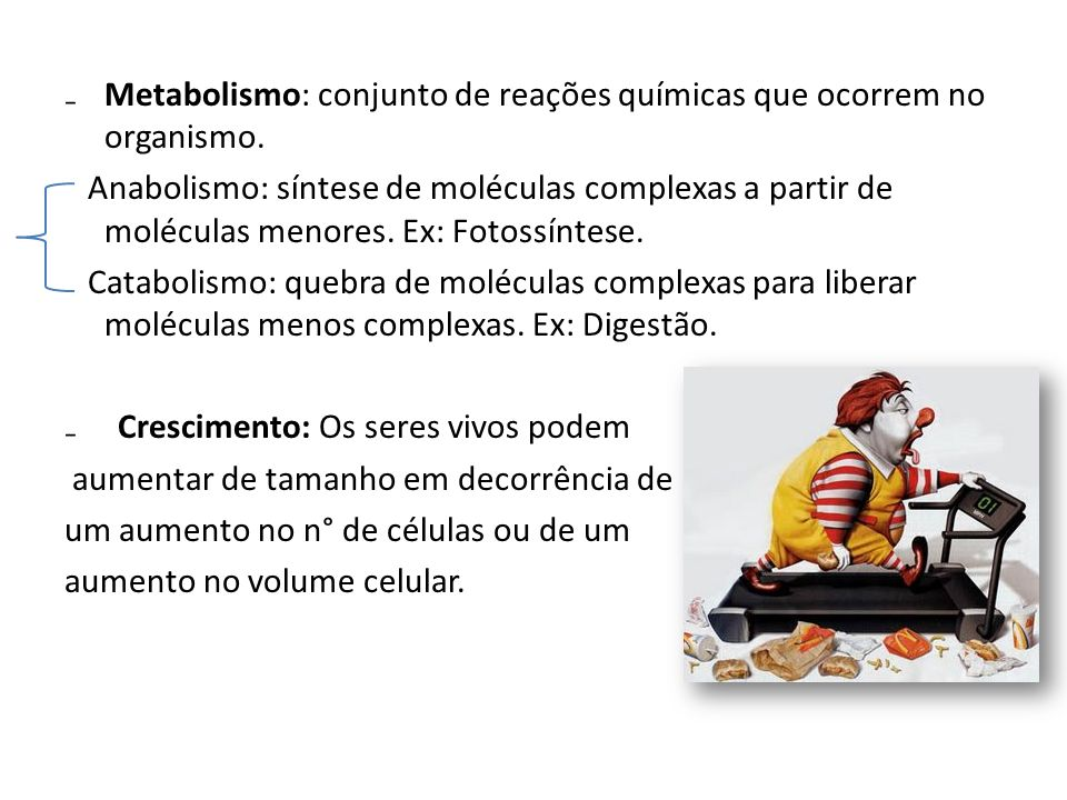 Metabolismo: conjunto de reações químicas que ocorrem no organismo.