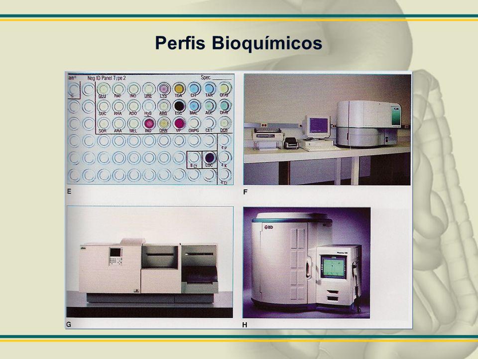 Perfis Bioquímicos