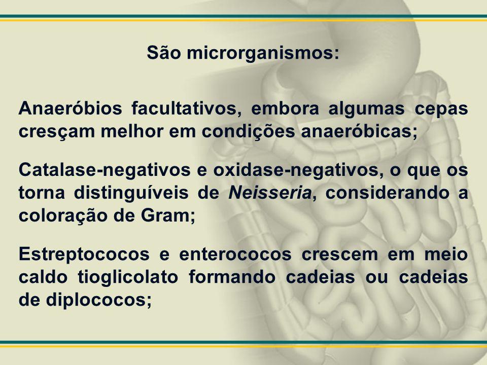 São microrganismos: Anaeróbios facultativos, embora algumas cepas cresçam melhor em condições anaeróbicas;