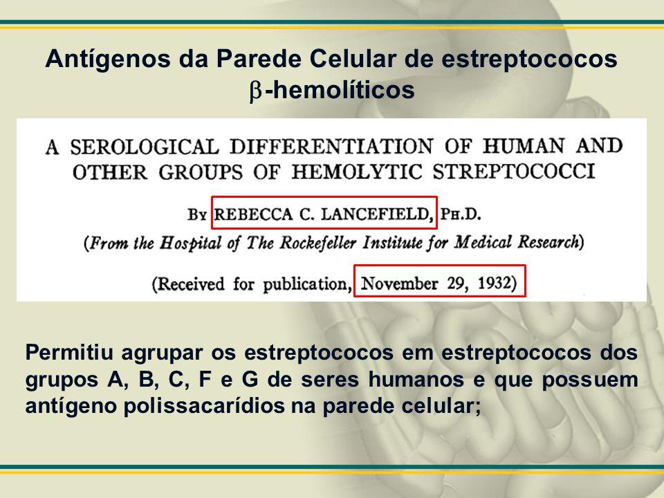 Antígenos da Parede Celular de estreptococos b-hemolíticos