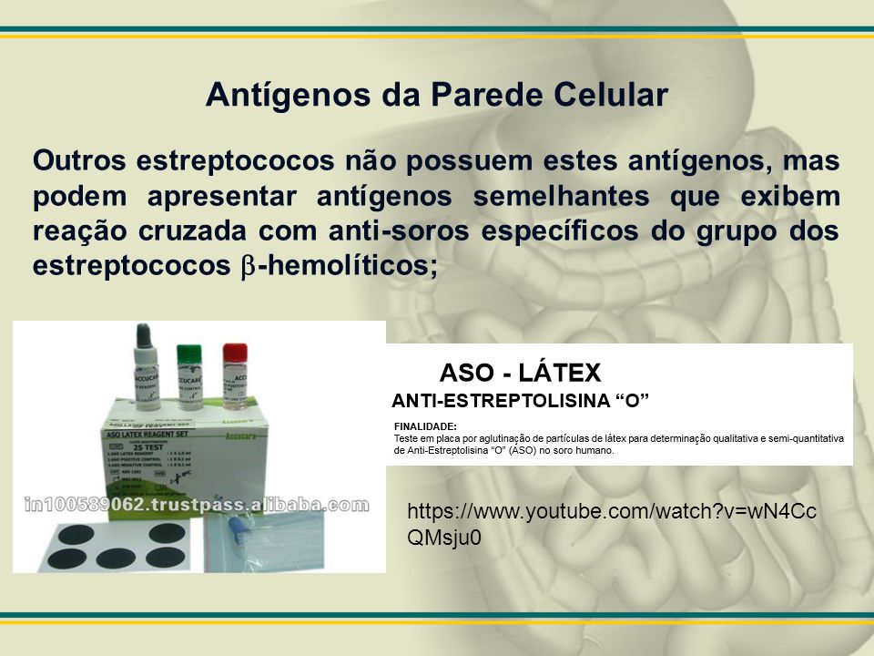 Antígenos da Parede Celular