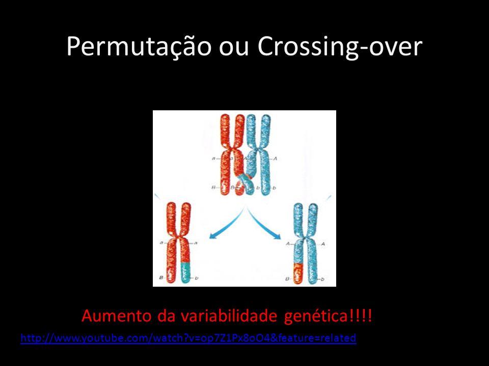 Permutação ou Crossing-over