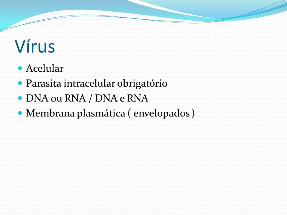 Vírus Acelular Parasita intracelular obrigatório