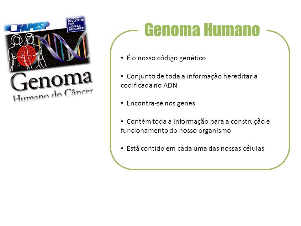 Genoma Humano É o nosso código genético
