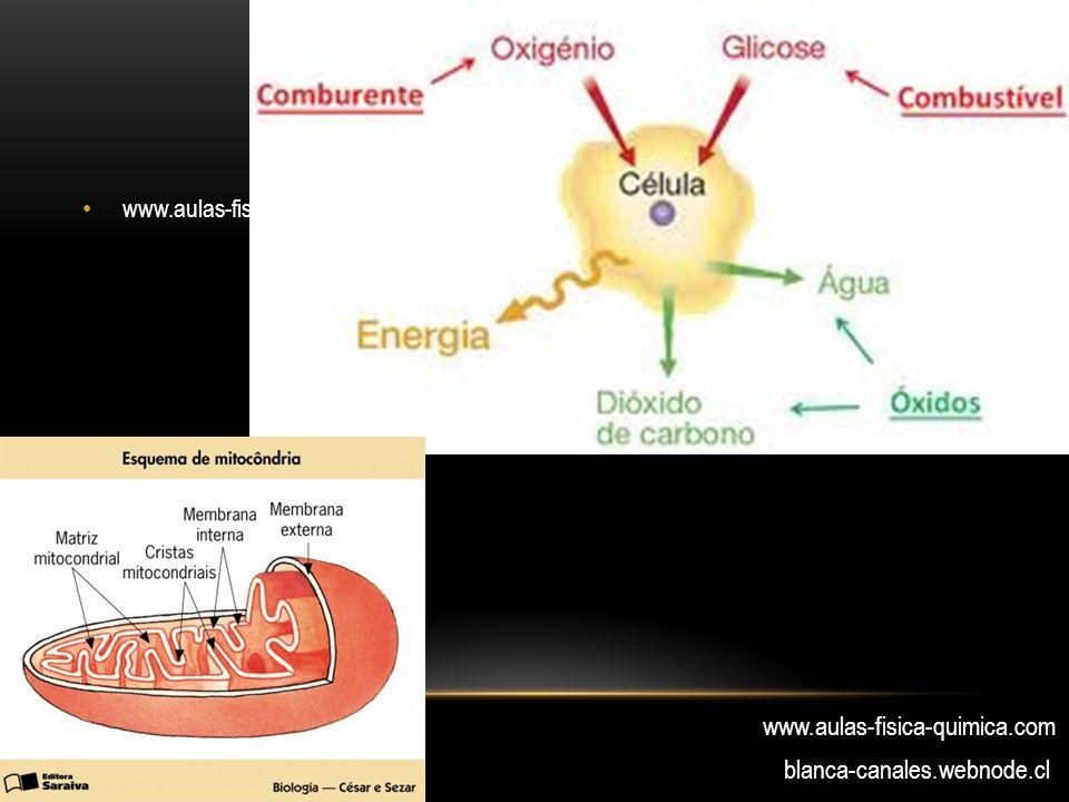 www.aulas-fisica-quimica.com blanca-canales.webnode.cl