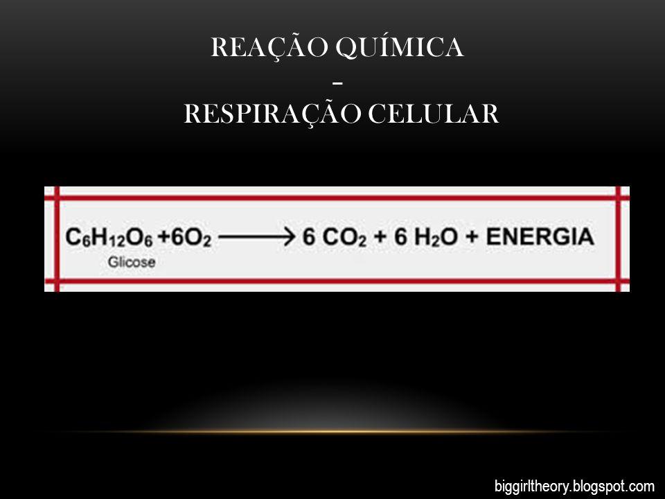 Reação química – respiração celular