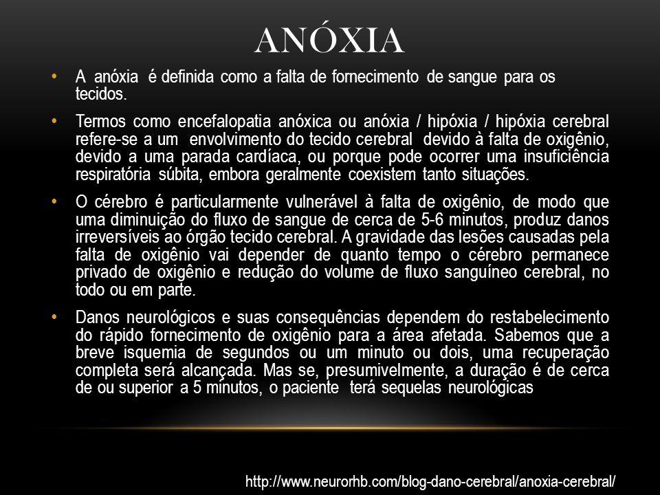 anóxia A anóxia é definida como a falta de fornecimento de sangue para os tecidos.