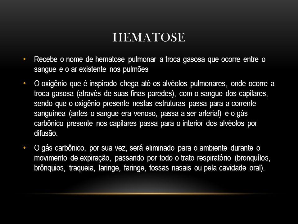 HEMATOSE Recebe o nome de hematose pulmonar a troca gasosa que ocorre entre o sangue e o ar existente nos pulmões.