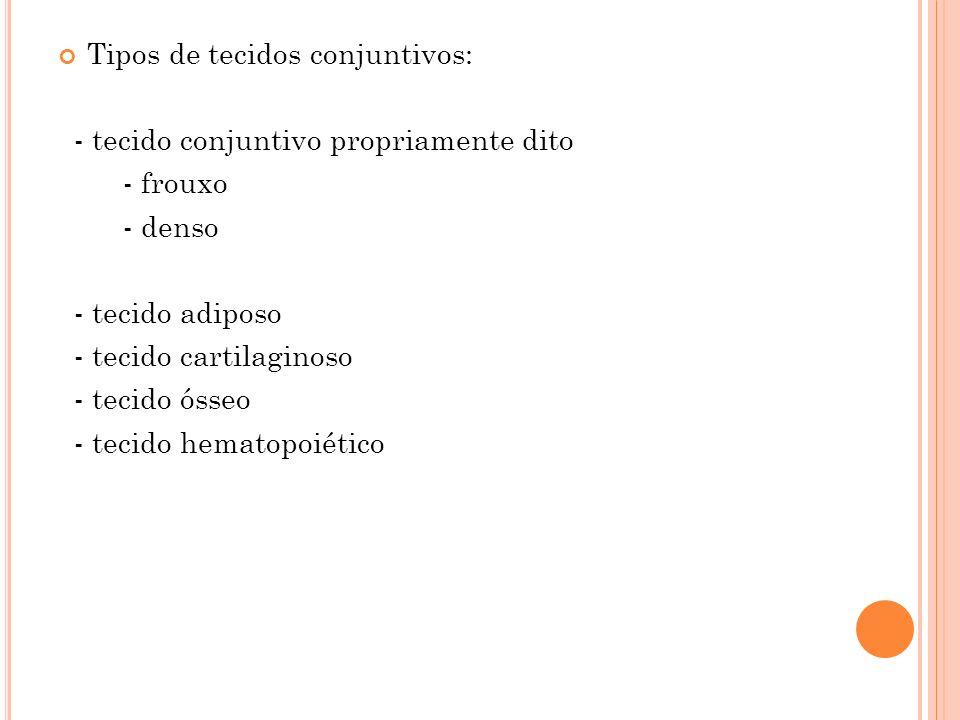 Tipos de tecidos conjuntivos: