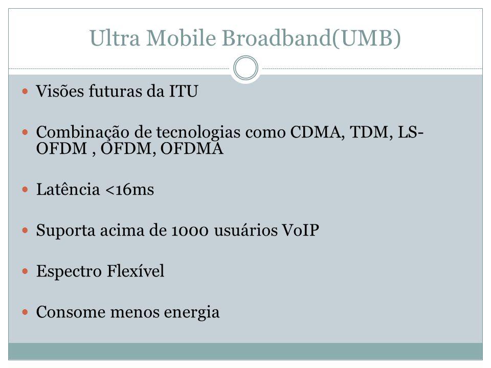 Ultra Mobile Broadband(UMB)