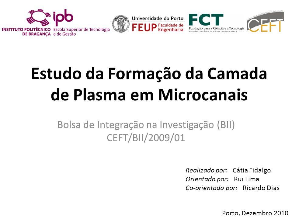 Estudo da Formação da Camada de Plasma em Microcanais