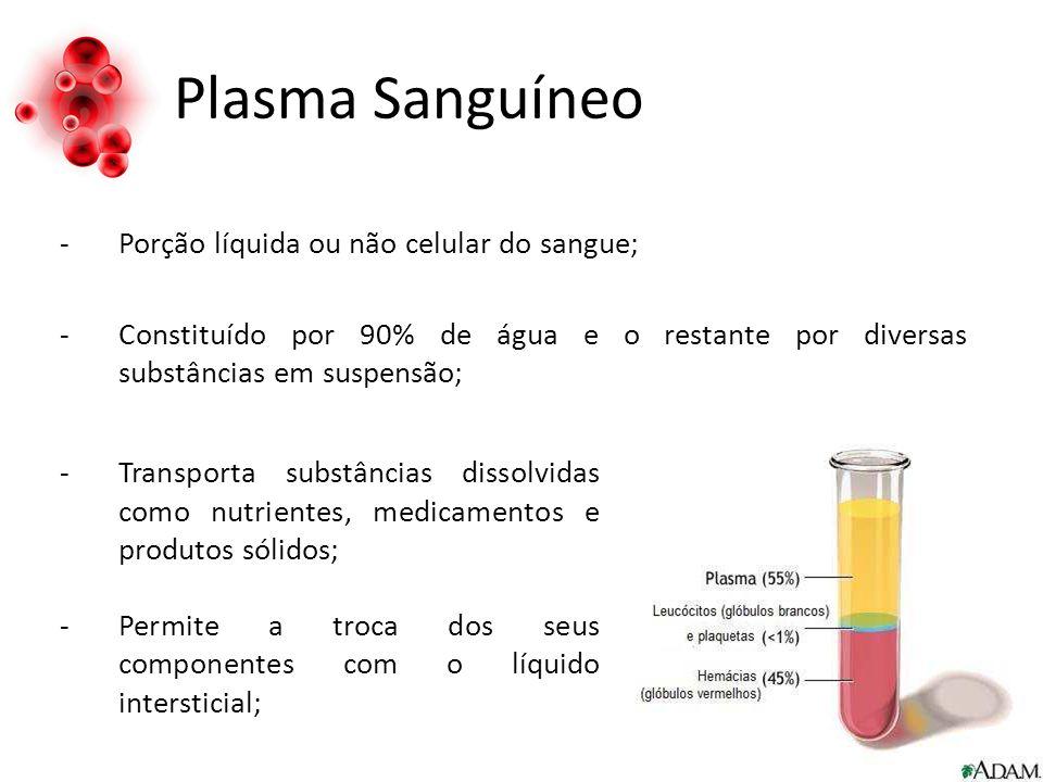 Plasma Sanguíneo Porção líquida ou não celular do sangue;