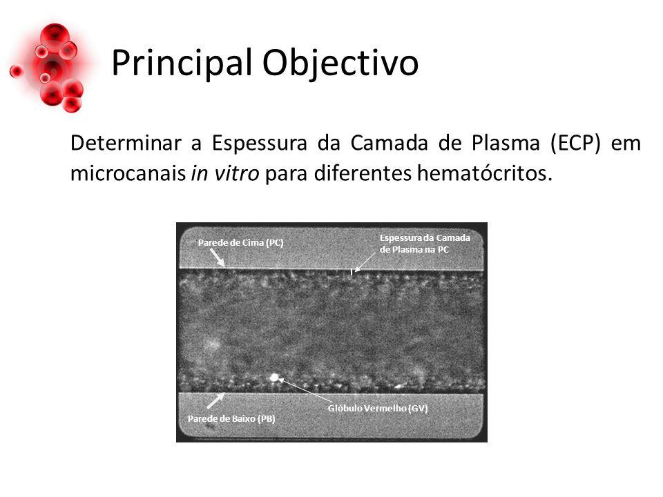 Principal Objectivo Determinar a Espessura da Camada de Plasma (ECP) em microcanais in vitro para diferentes hematócritos.