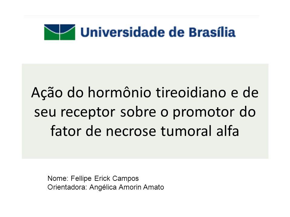 Ação do hormônio tireoidiano e de seu receptor sobre o promotor do fator de necrose tumoral alfa