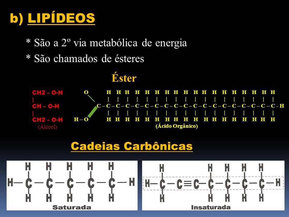 b) LIPÍDEOS * São a 2º via metabólica de energia