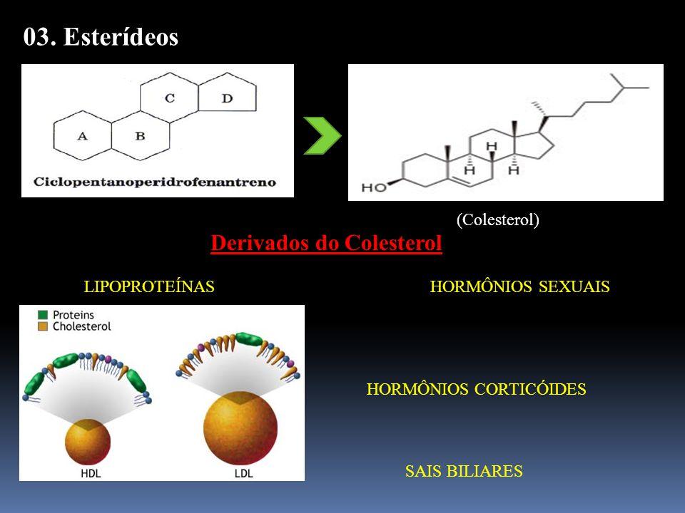 03. Esterídeos Derivados do Colesterol (Colesterol)