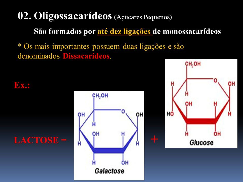+ 02. Oligossacarídeos (Açúcares Pequenos) Ex.: LACTOSE =