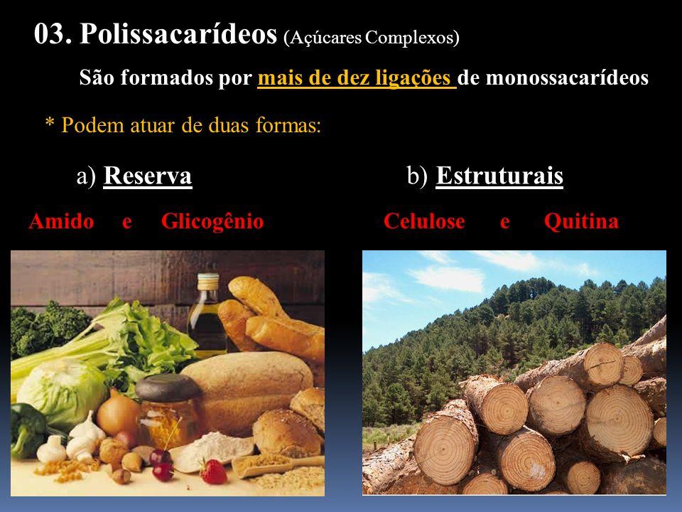 03. Polissacarídeos (Açúcares Complexos)