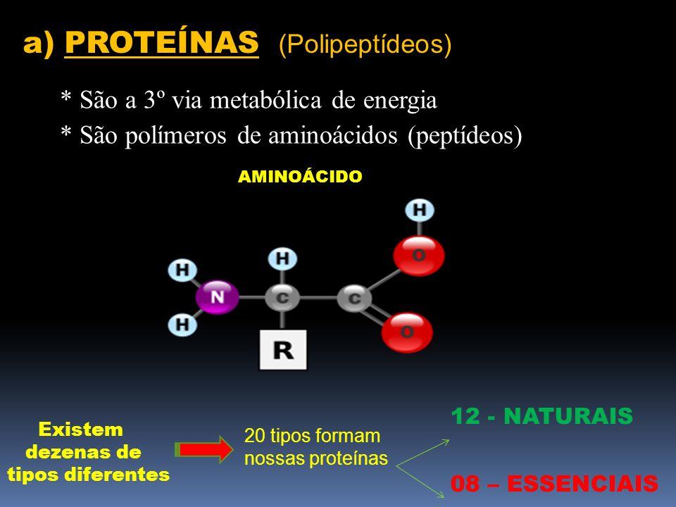 a) PROTEÍNAS (Polipeptídeos)