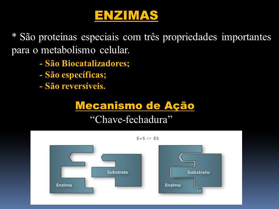 ENZIMAS * São proteínas especiais com três propriedades importantes