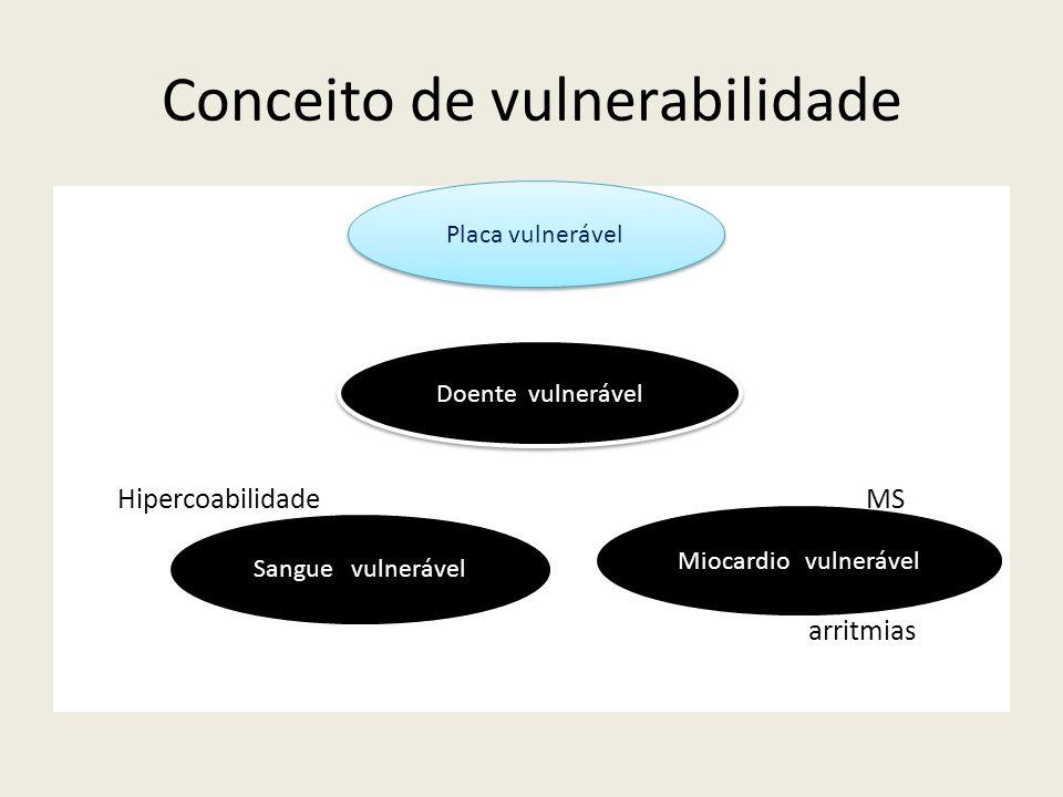 Conceito de vulnerabilidade