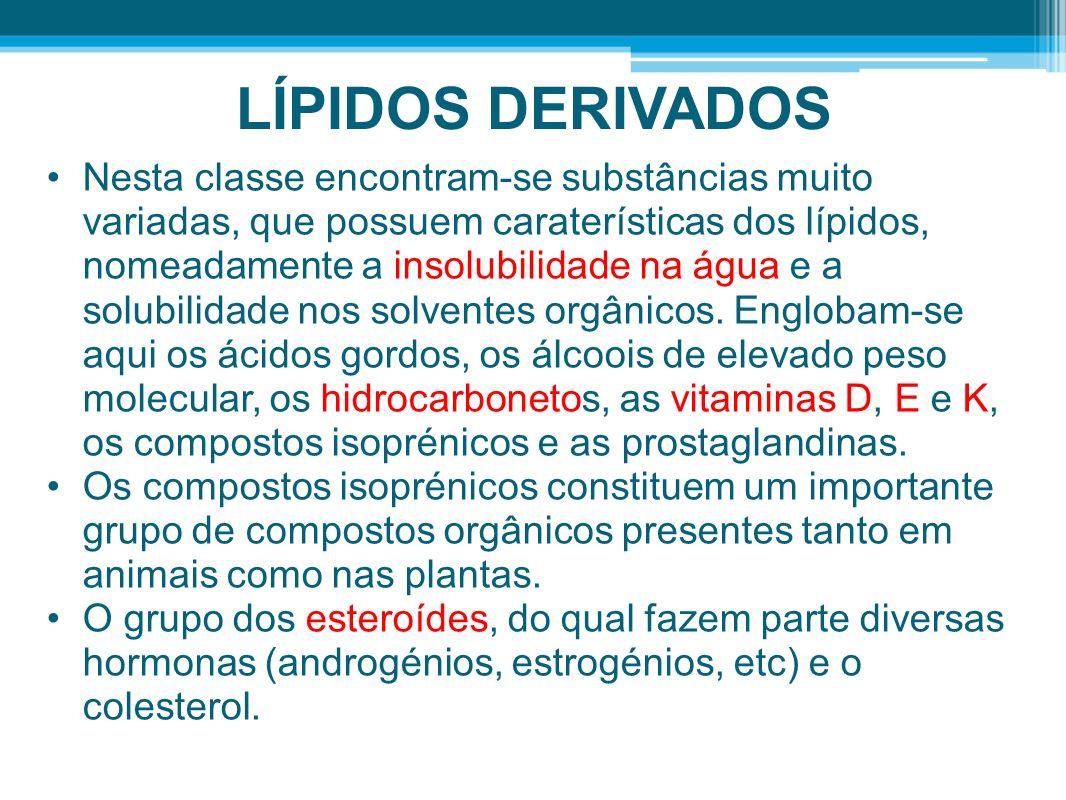 LÍPIDOS DERIVADOS