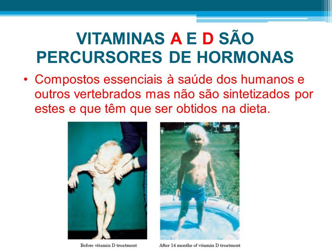 VITAMINAS A E D SÃO PERCURSORES DE HORMONAS