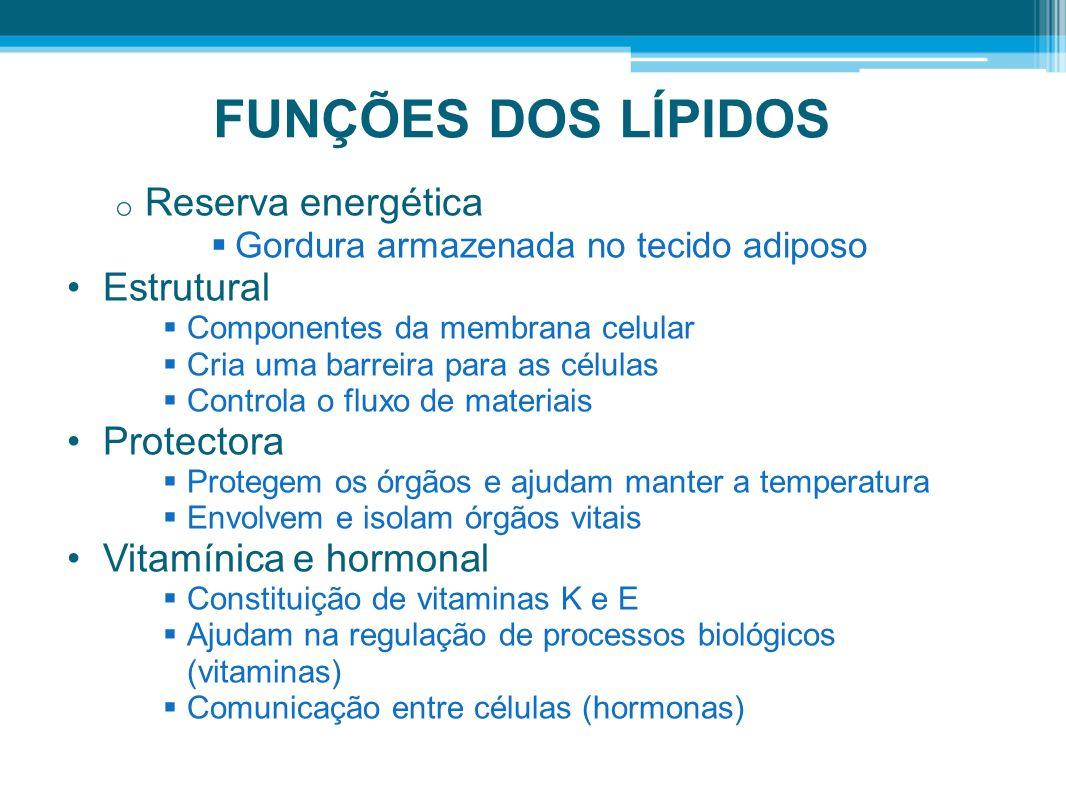 FUNÇÕES DOS LÍPIDOS Reserva energética Estrutural Protectora