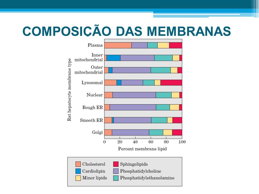 COMPOSIÇÃO DAS MEMBRANAS