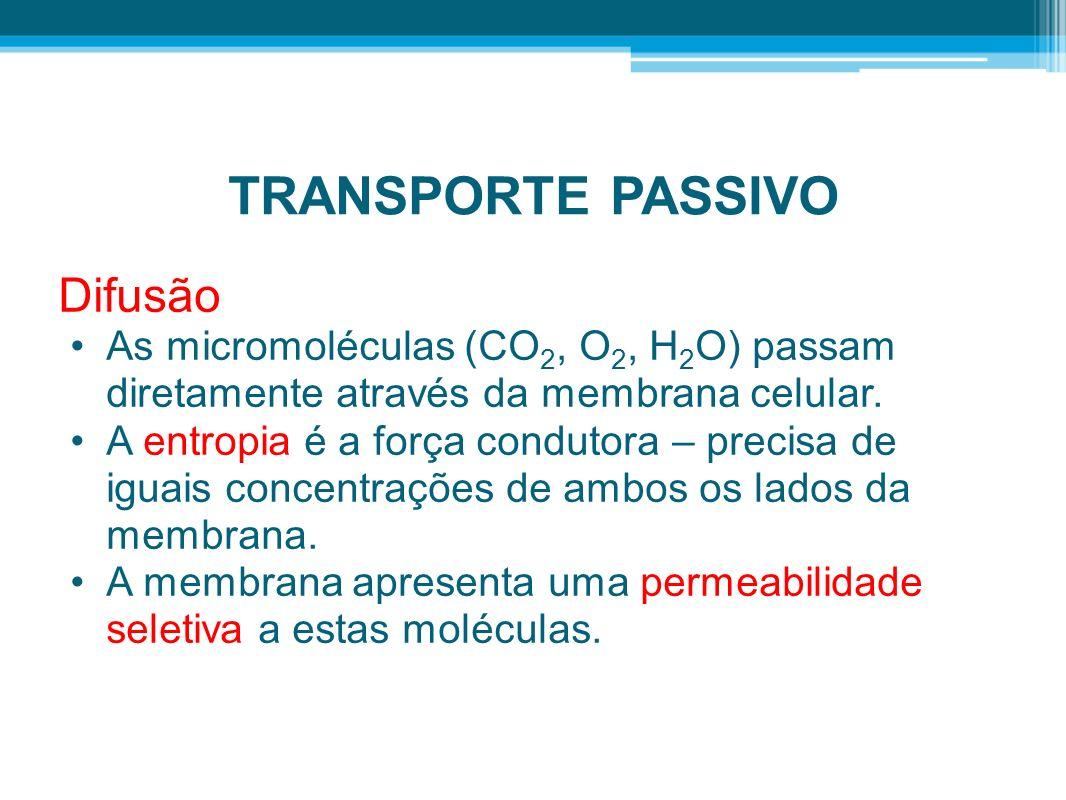TRANSPORTE PASSIVO Difusão