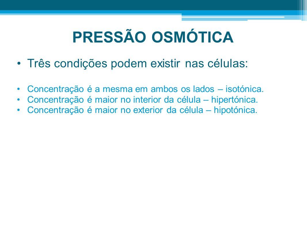 PRESSÃO OSMÓTICA Três condições podem existir nas células: