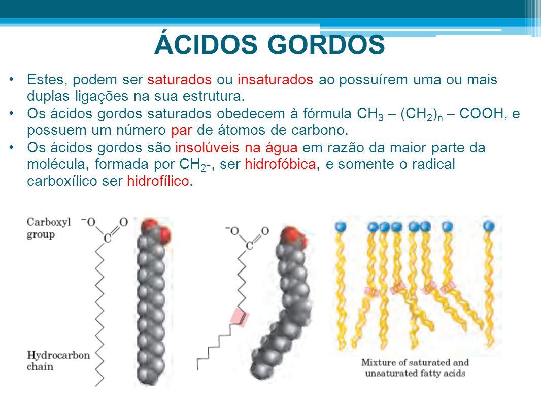 ÁCIDOS GORDOS Estes, podem ser saturados ou insaturados ao possuírem uma ou mais duplas ligações na sua estrutura.