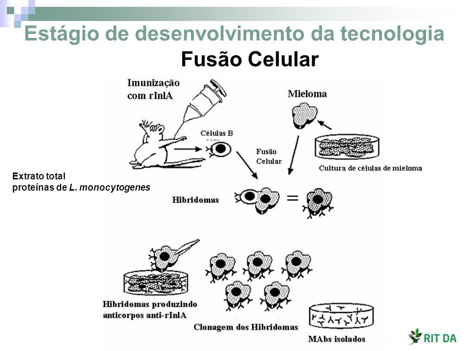 Estágio de desenvolvimento da tecnologia