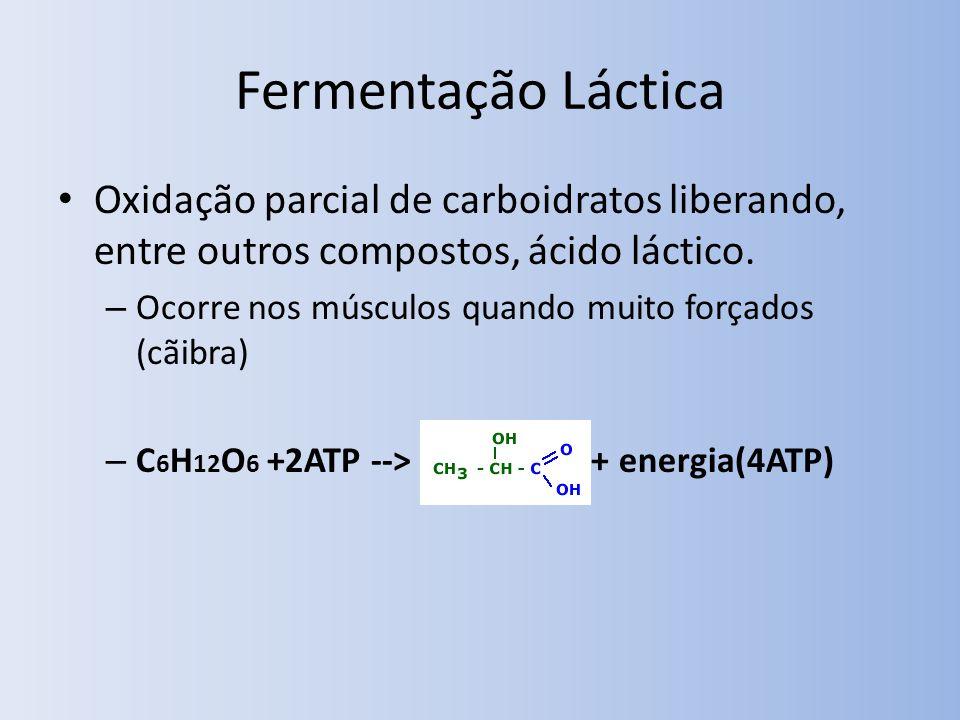 Fermentação Láctica Oxidação parcial de carboidratos liberando, entre outros compostos, ácido láctico.