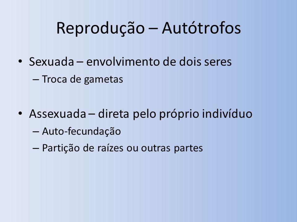 Reprodução – Autótrofos