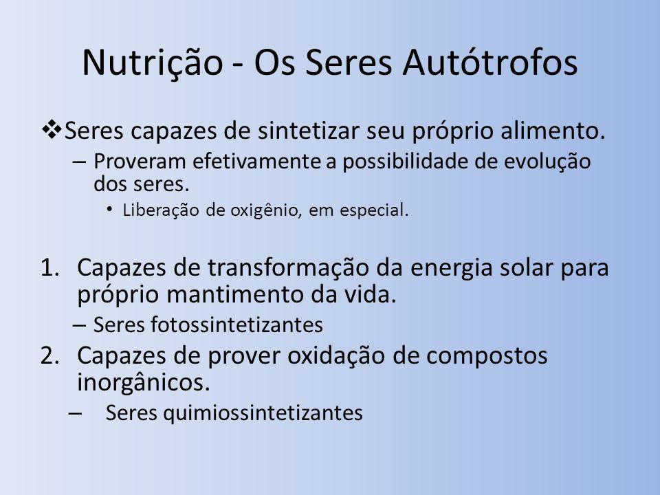 Nutrição - Os Seres Autótrofos