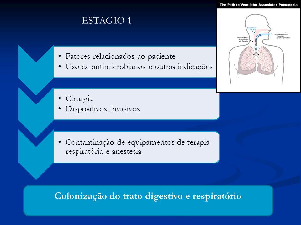 Colonização do trato digestivo e respiratório