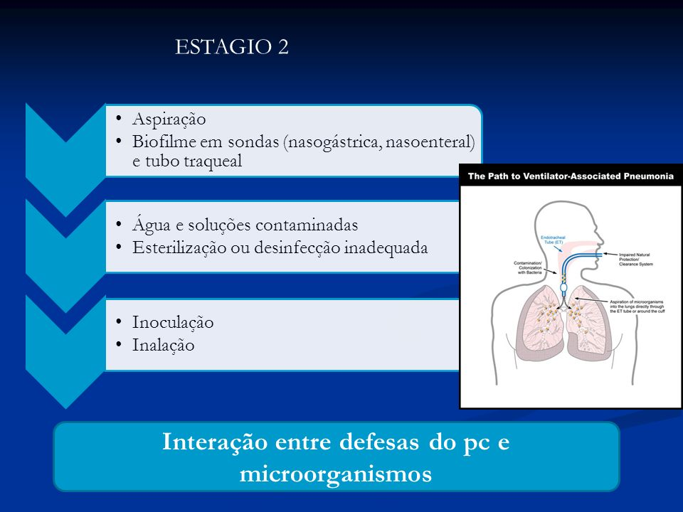 Interação entre defesas do pc e microorganismos