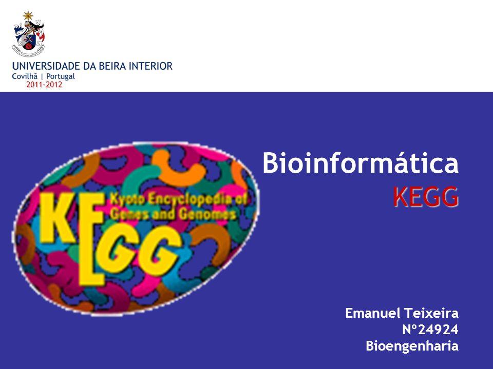 Emanuel Teixeira Nº24924 Bioengenharia