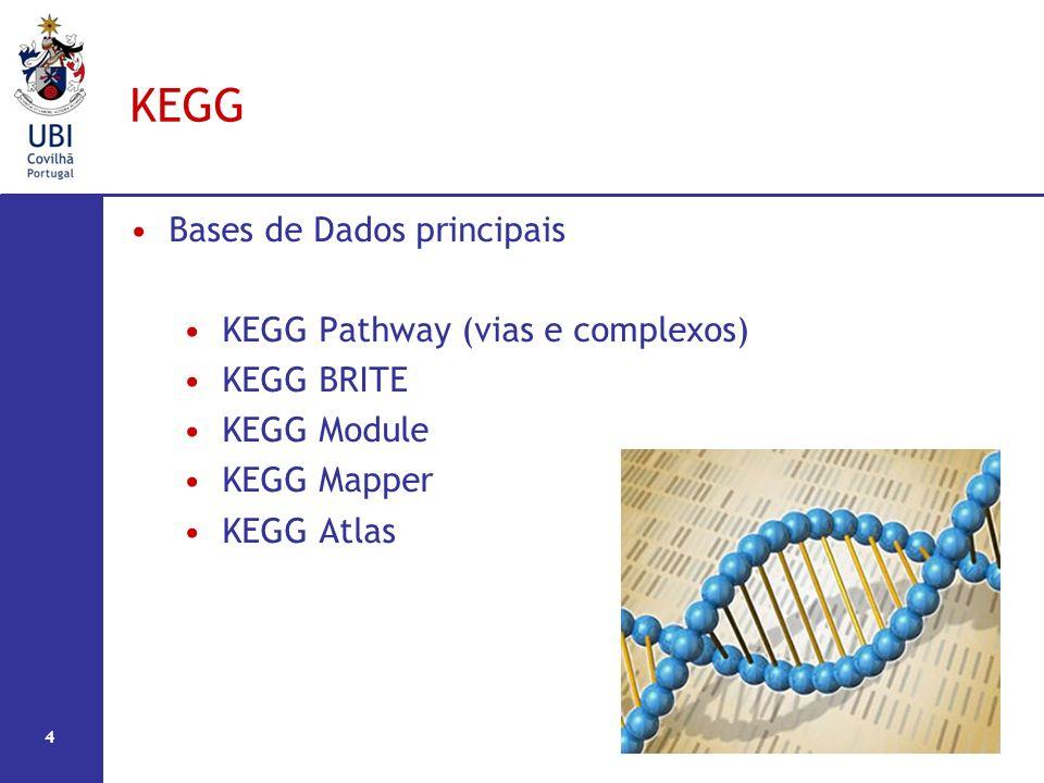 KEGG Bases de Dados principais KEGG Pathway (vias e complexos)