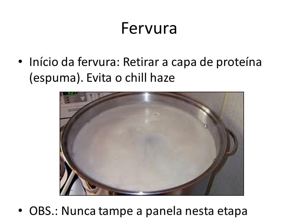Fervura Início da fervura: Retirar a capa de proteína (espuma).