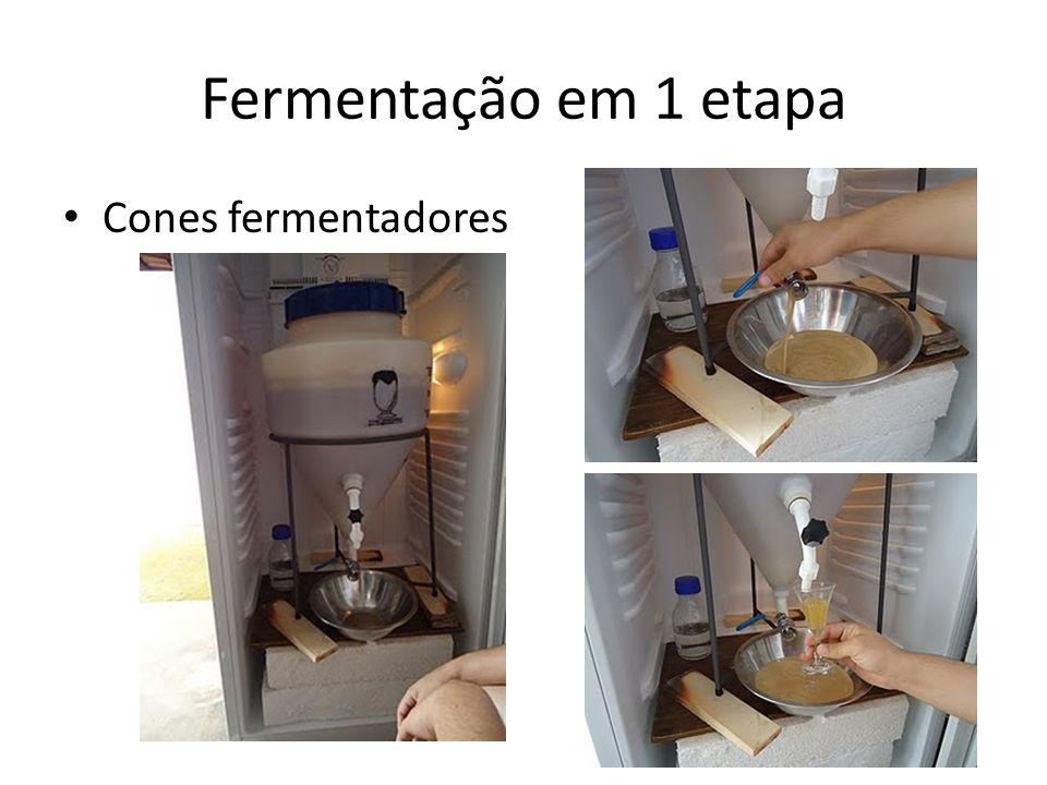 Fermentação em 1 etapa Cones fermentadores