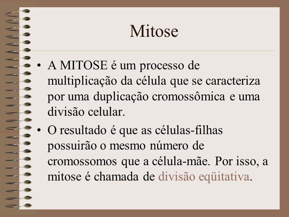 Mitose A MITOSE é um processo de multiplicação da célula que se caracteriza por uma duplicação cromossômica e uma divisão celular.