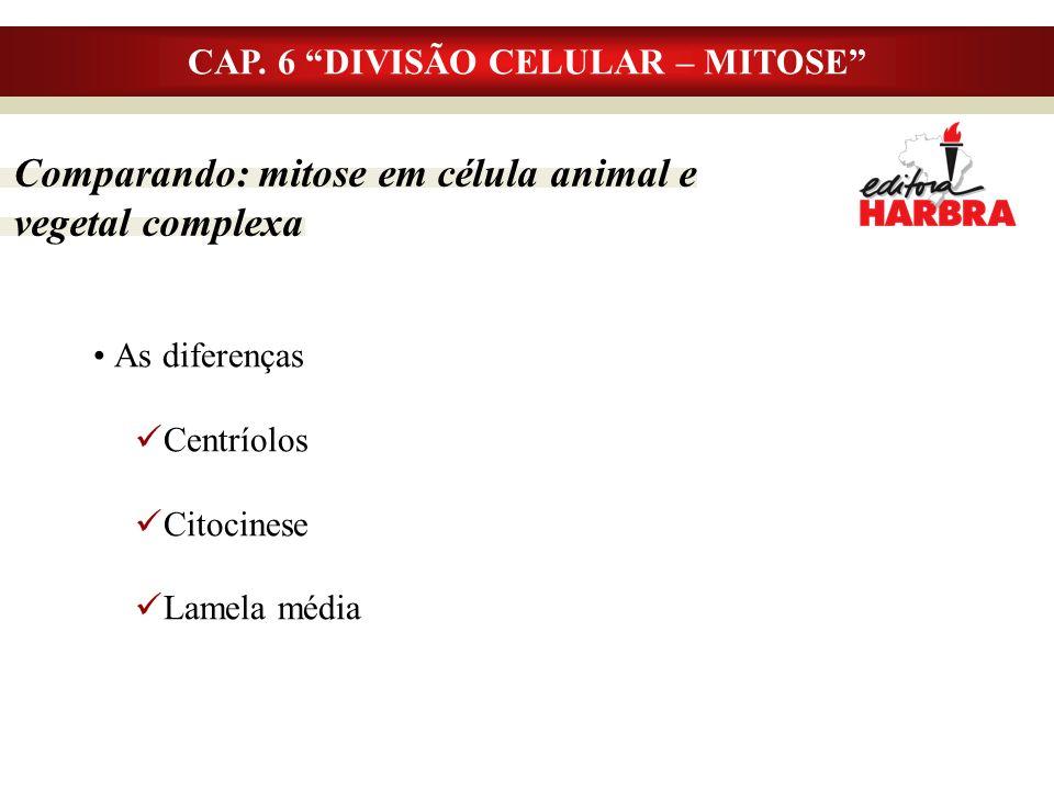 CAP. 6 DIVISÃO CELULAR – MITOSE