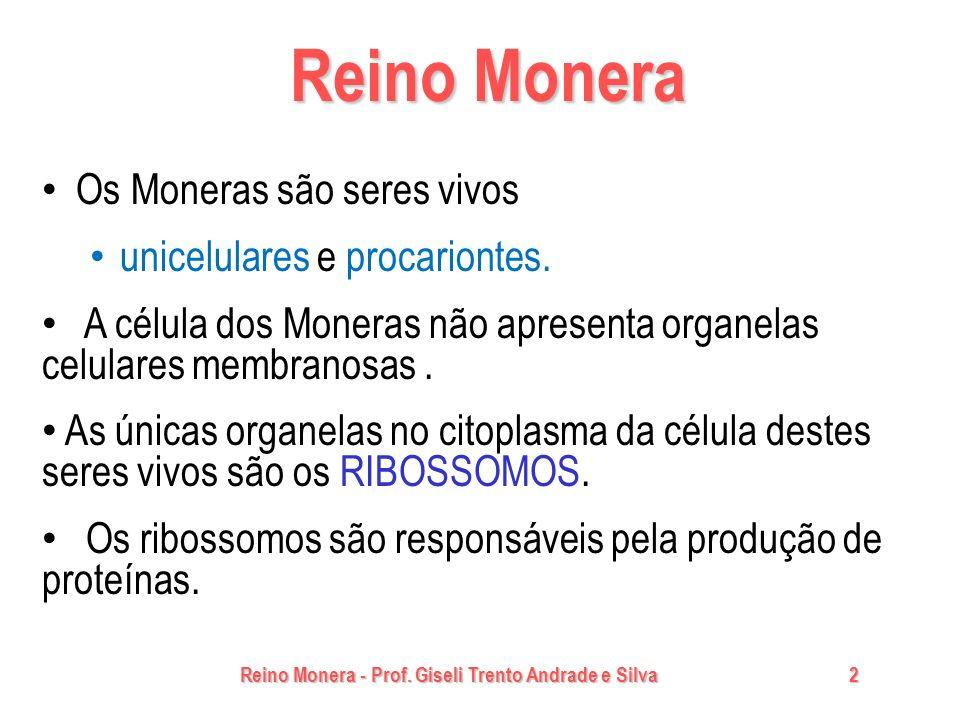 Reino Monera - Prof. Giseli Trento Andrade e Silva