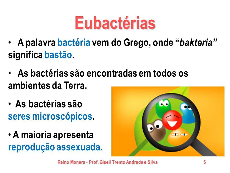 Eubactérias A palavra bactéria vem do Grego, onde bakteria significa bastão. As bactérias são encontradas em todos os ambientes da Terra.