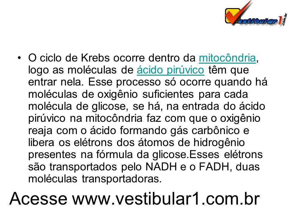 Acesse www.vestibular1.com.br