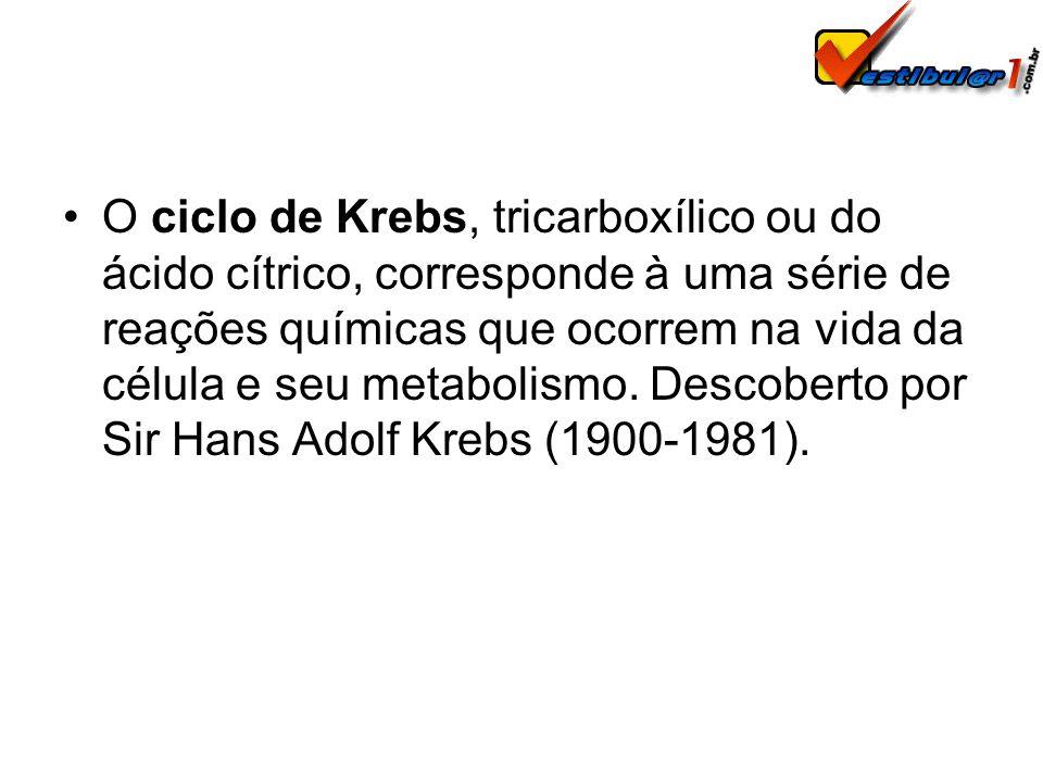 O ciclo de Krebs, tricarboxílico ou do ácido cítrico, corresponde à uma série de reações químicas que ocorrem na vida da célula e seu metabolismo.