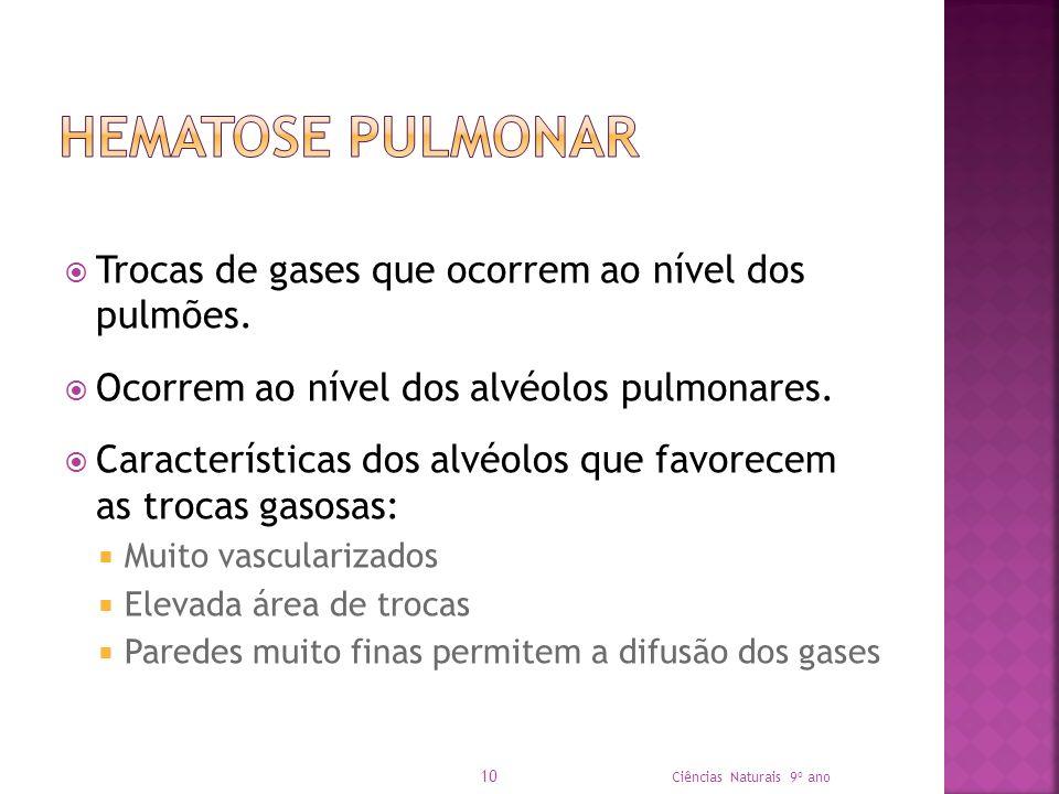 Hematose Pulmonar Trocas de gases que ocorrem ao nível dos pulmões.